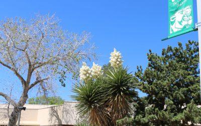 ENMU-Roswell Observes Spring Break